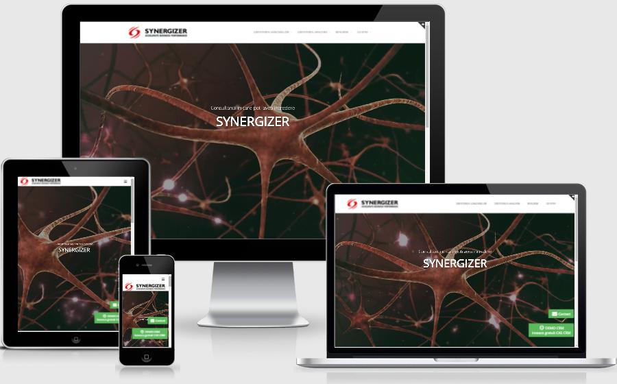 Site de prezentare - Synergizer.ro